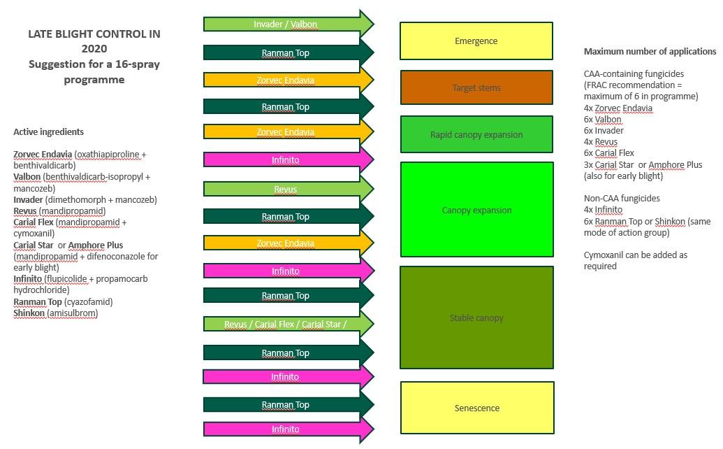 Blight control programme